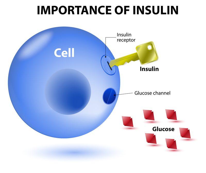 Insulineresistentie